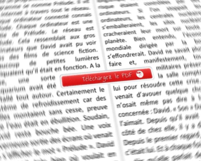 Une meta box pour lier des PDF à vos articles WordPress - wabeo