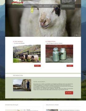 developpement et intégration WordPress vitrine responsive